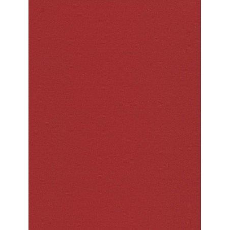 Vienspalviai raudono atspalvio roletai