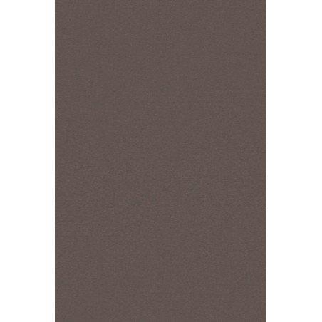 Naktinės rudo atspalvio romanetės